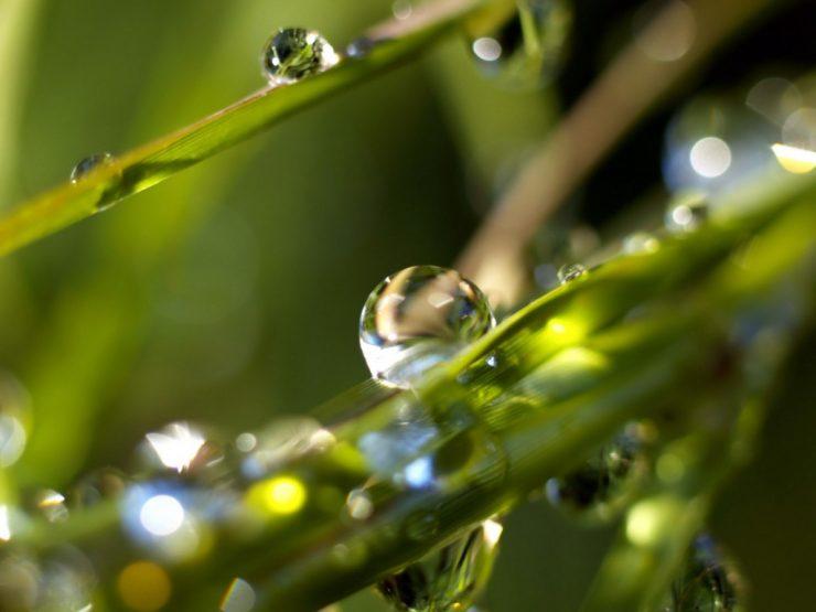Krople wody, woda ;) 12