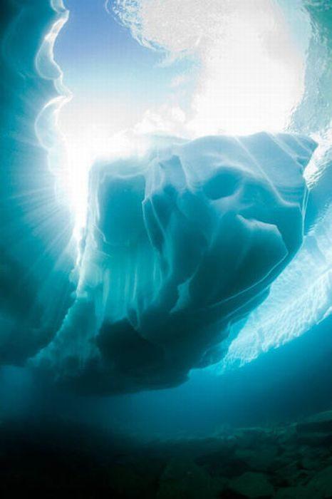 Nurkowanie pod lodem 6