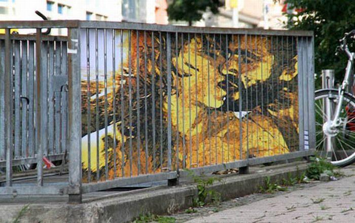 Zebrating-art: niezwykłe obrazy na ogrodzeniach 2